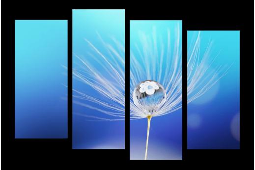 Модульная картина Капля на цветке
